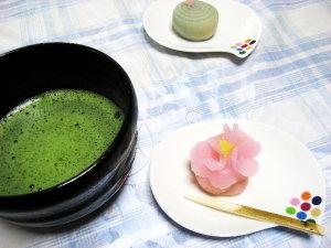 お抹茶タイム♡八重桜