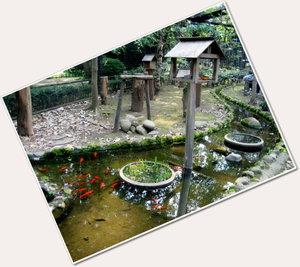 井の頭動物園★リス園