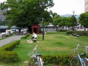 ぶらり♡川辺の公園