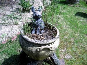 のどかな風景♡植木鉢