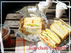 公園ランチ♡手作りサンドイッチ