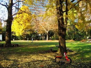 やすらぎ空間♡日比谷公園