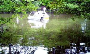 ぶらり♡井の頭公園